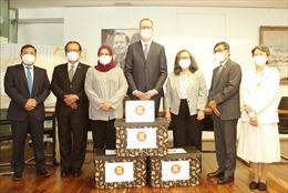 ASEAN đoàn kết với Cộng hòa Séc ứng phó với đại dịch COVID-19