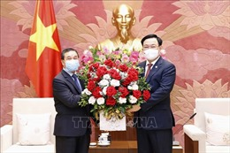 Chủ tịch Quốc hội Vương Đình Huệ tiếp Đại sứ Lào