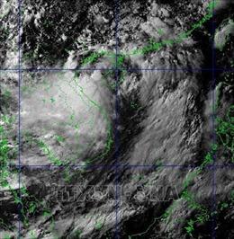 Hải Phòng: Chủ động phòng, chống áp thấp nhiệt đới và bão
