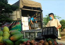 Hội Nông dân TP Hải Phòng hỗ trợ tiêu thụ nông sản Sơn La