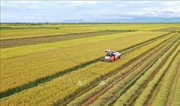 Phát triển kinh tế gắn với công bằng xã hội - Bài 3: Khi nông thôn đẹp về diện, mới về chất
