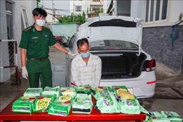 Bộ đội Biên phòng TP Hồ Chí Minh triệt phá vụ vận chuyển 20 kg ma túy