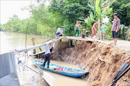 Cần Thơ: Mưa dông, sạt lở bờ sông làm sụp đổ nhà dân
