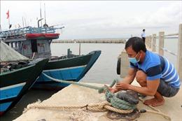 Chủ động phương án sơ tán, di dời các hộ dân vùng có nguy cơ bị ảnh hưởng bão số 5