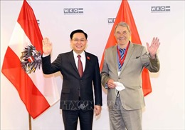 Chủ tịch Quốc hội Vương Đình Huệ tham dự Diễn đàn doanh nghiệp Việt Nam - Áo