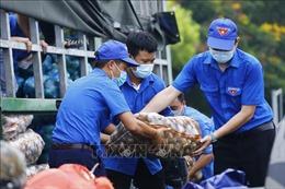 Khoảng 5.000 lượt thanh niên Thủ đô đăng ký tình nguyện tham gia phòng, chống dịch