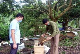 Làm giàu từ vườn mẫu nông thôn mới ở Tân Tiến