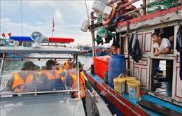 Bão số 7: Đảm bảo an toàn cho ngư dân và sản xuất nông nghiệp