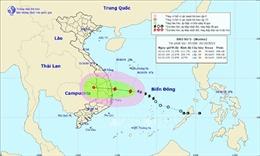 Quảng Nam sẵn sàng phương án sơ tán khỏi khu vực nguy hiểm của bão số 5