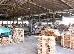 Bộ Công Thương công bố 13 mặt hàng có nguy cơ bị áp thuế phòng vệ thương mại