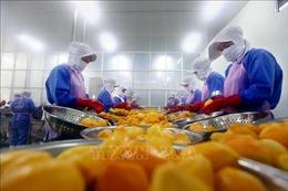 Liên kết chuỗi giá trị trong sản xuất nông nghiệp - Bài 1: Sáng tạo trong từng sản phẩm