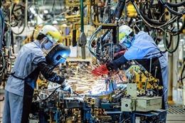 Việt Nam nâng hạng năng lực cạnh tranh toàn cầu - Bài 5: Dư địa thúc đẩy