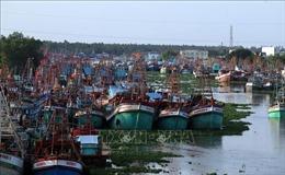 Chấm dứt ngay tình trạng tàu cá khai thác hải sản trái phép ở vùng biển nước ngoài