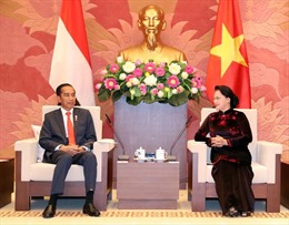 Thúc đẩy thành lập Nhóm Nghị sỹ Hữu nghị Indonesia - Việt Nam