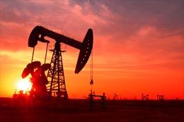 Giá dầu thế giới giảm mạnh nhất trong gần một tháng
