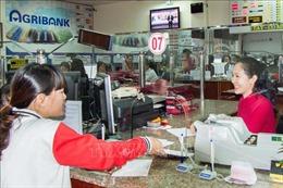 Dư nợ cho vay qua Đoàn Thanh niên đạt hơn 23.000 tỷ đồng