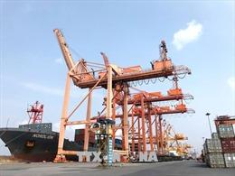 Phê duyệt chủ trương đầu tư 2 bến container tại cảng Hải Phòng