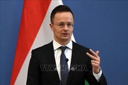 Leo thang căng thẳng, Hungary và Ukraine đồng loạt trục xuất lãnh sự