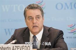 WTO: Chiến tranh thương mại leo thang có thể xóa sổ hàng triệu việc làm