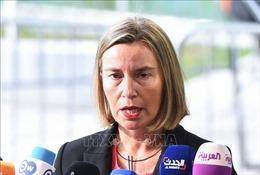 EU yêu cầu 'những người có trách nhiệm' giải trình đầy đủ về cái chết của nhà báo Jamal Khashoggi