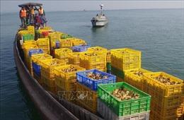 Quảng Ninh bắt giữ nhiều hàng nhập lậu