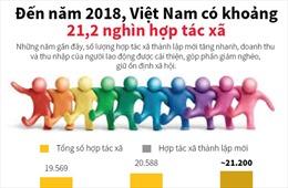 Đến năm 2018, Việt Nam có khoảng 21,2 nghìn hợp tác xã