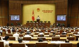 Hạn chế tối đa việc cấp bảo lãnh Chính phủ cho các khoản vay mới