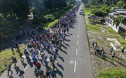 Tổng thống Mỹ ký sắc lệnh nhập cư mới về quy chế tị nạn