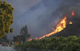 Cháy rừng ngùn ngụt ở bang California, dân cư Mỹ sơ tán khẩn