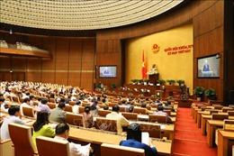 Kỳ họp thứ 6, Quốc hội khóa XIV: Thể hiện cam kết mạnh mẽ về đổi mới và hội nhập của Việt Nam