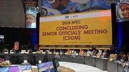 Đồng hành cùng APEC hướng tới thập niên phát triển mới