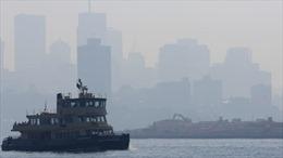 Thành phố Sydney của Australia chìm trong khói bụi