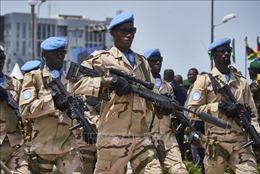 Đột kích, tiêu diệt hàng chục phần tử thánh chiến tại Mali