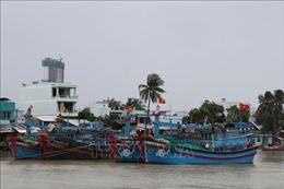 Hoàn thành công tác ứng phó bão số 9 trước 16 giờ ngày 24/11