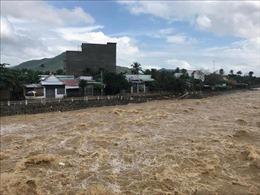 Bão số 9 gây nhiều thiệt hại tại các địa phương