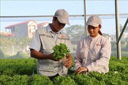 Cải cách thủ tục hành chính để hút đầu tư vào nông nghiệp