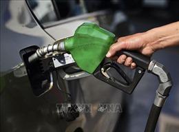 Giá dầu phục hồi sau đợt bán tháo mạnh