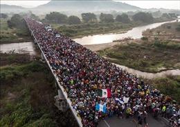 Tòa án Mỹ phản đối chính sách nhập cư của Nhà Trắng