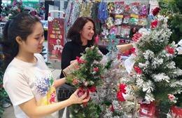 Cây thông Noel tự nhiên nhập khẩu gây 'bão' trên thị trường
