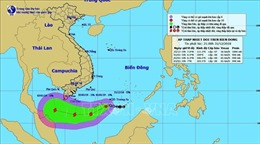 Áp thấp nhiệt đới khả năng mạnh lên thành bão, sức gió giật cấp 10