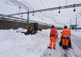 Bão tuyết hoành hành khu vực Balkan