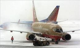 Bão tuyết càn quét nước Mỹ, ít nhất 7 người thiệt mạng
