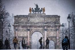 Tuyết rơi dày đặc ở Pháp