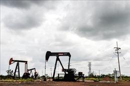 Giá dầu thế giới tăng trước dấu hiệu nguồn cung thắt chặt