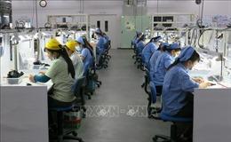 Cần thực hiện đơn hàng gấp, gần 700 công nhân làm việc trong kỳ nghỉ Tết