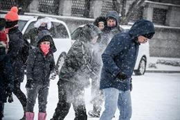 Nhiều trường học tại Washington đóng cửa do bão tuyết