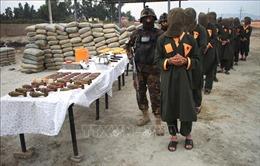 Afghanistan tiêu diệt nhiều phiến quân Taliban