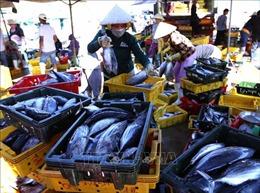 Cá ngừ xuất khẩu 'mắc kẹt' vì quy định kiểm dịch động vật