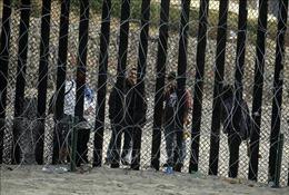 Mexico bác bỏ việc cùng Mỹ giám sát các phóng viên và nhà hoạt động xã hội