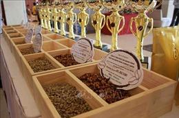Công nhận 25 mẫu cà phê đạt tiêu chuẩn cà phê đặc sản Việt Nam